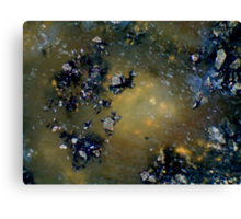 Asteroid Field Canvas Print