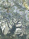 Tree of Life by Stephanie Bateman-Graham