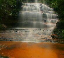 Junction Falls .. golden sands by Michael Matthews