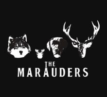 The Marauders by pirateprincess