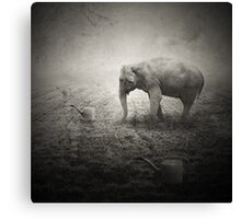 Animaly #15 Canvas Print