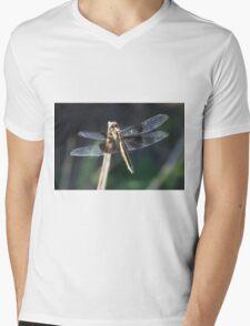 Dragonfly The Masterful Predator Mens V-Neck T-Shirt
