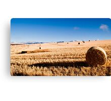 Hay Bale Just After Dawn Canvas Print