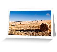 Hay Bale Just After Dawn Greeting Card