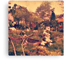 community garden Canvas Print