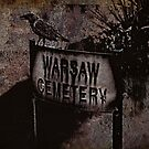 Warsaw Cemetery by Scott Mitchell