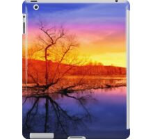 Tranquil Tree Reflection Sunset Landscape iPad Case/Skin