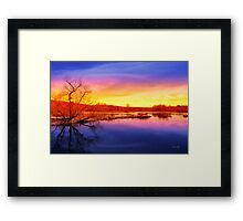Tranquil Tree Reflection Sunset Landscape Framed Print