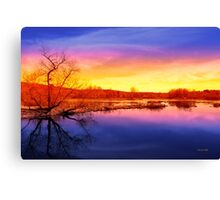 Tranquil Tree Reflection Sunset Landscape Canvas Print