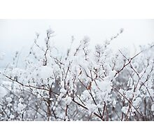 White abstract Photographic Print