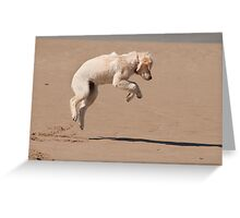 Leaps and bounds, Bannow beach, County Wexford, Ireland Greeting Card
