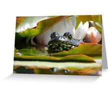 Beautiful Toad Greeting Card