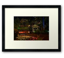 The Magic of Bubbles Framed Print