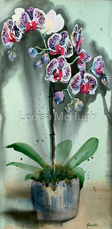 The Weeping Orchids by Louisa McQ