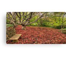 Resting Place #2 - Secret Garden, Mount Wilson, NSW Australia - The HDR Experience Canvas Print