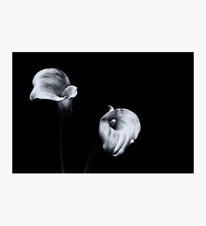 Sweet Serenity... II Photographic Print