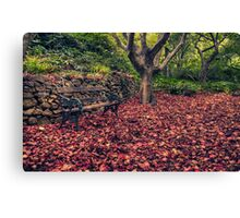 Resting Place - Secret Garden, Mount Wilson, NSW Australia - The HDR Experience Canvas Print