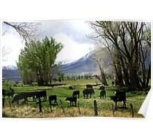 Pasture Of Green Poster