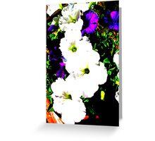 Petunias posterized Greeting Card