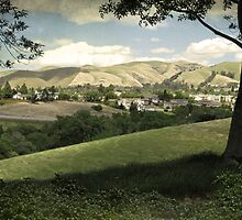 Overlooking Fremont by Ellen Cotton