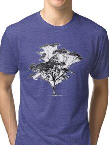 Summer Gum Tri-blend T-Shirt