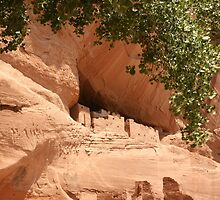 Canyon De Chelly National Monument.  by mikepemberton