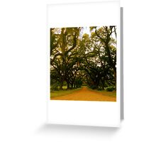 Oak Plantation Greeting Card