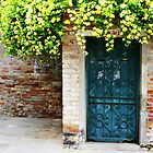 Blue Door, Yellow Flowers by Jewel Pfaffroth