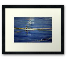 Shag on a Rope Framed Print