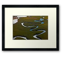 Serpentine View Framed Print