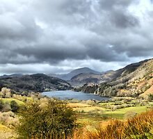 Beautiful Wales. by Irene  Burdell