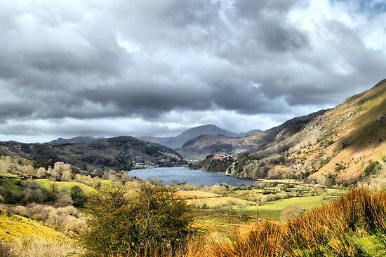Beautiful Wales. by Irene  Burdell