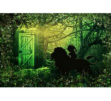 The Lion and the Wardrobe Photographic Print