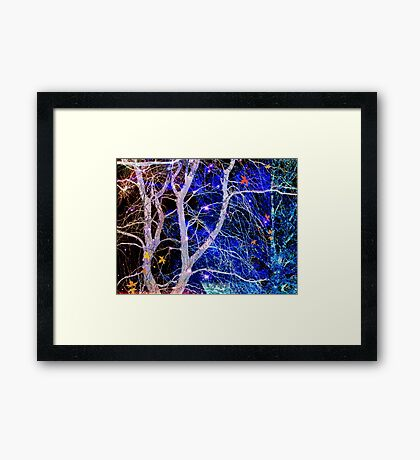 No 34 Framed Print