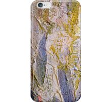 Paints  iPhone Case/Skin