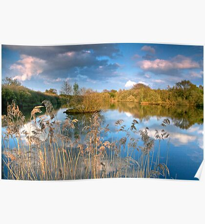 """Spring Reflection, Whisby Park"" Poster"