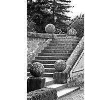 Blenheim Steps Photographic Print
