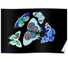 Butterfly Group Black Poster