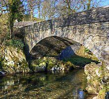 Elterwater Bridge by Jamie  Green