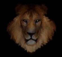 Male Lion by John Ryan