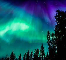 April23rd/12 Auroras #2 by peaceofthenorth