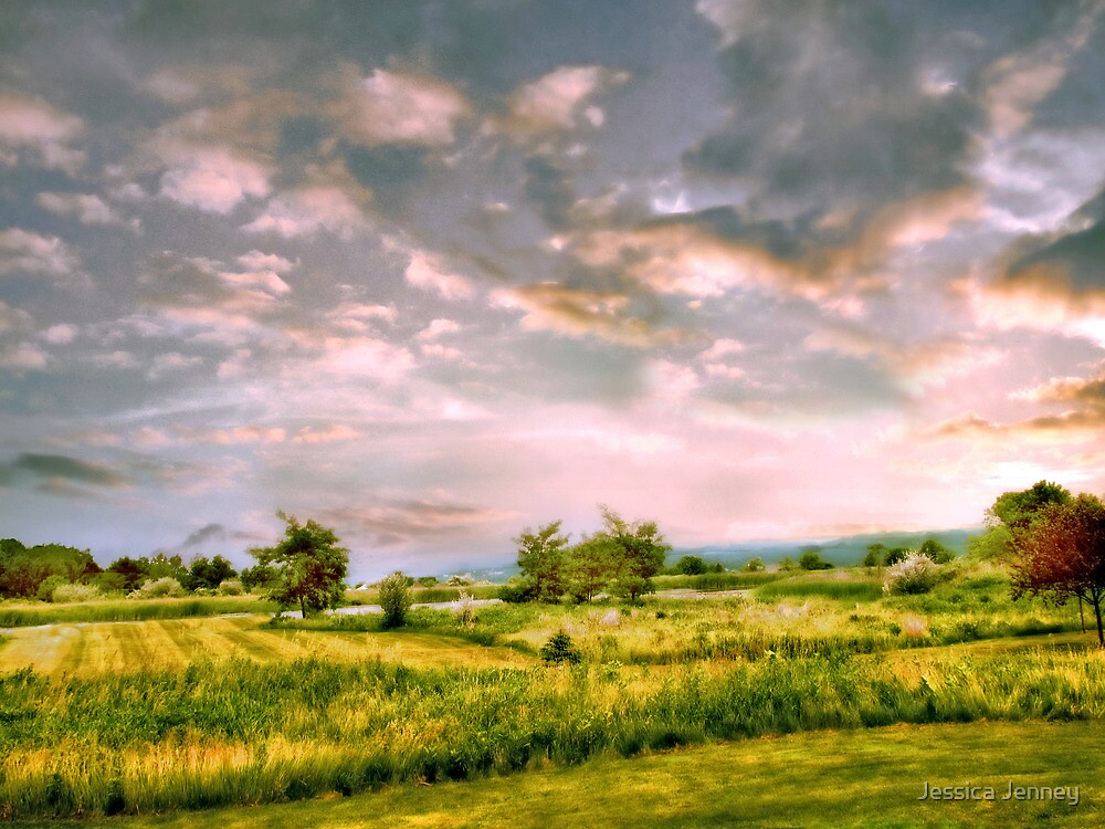 Valley View by Jessica Jenney