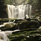 Black Water Fall State Park West Virginia.  by mikepemberton