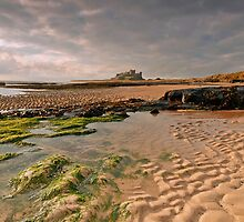 Early morning light on Bamburgh Castle, Northumberland by Martin Lawrence