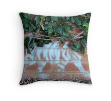 Stanmore (April 2012) Throw Pillow