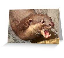 Smooth Coated Otter Greeting Card