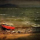 The Red Boat by Peter Hammer