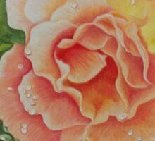 Blushing Rose Sticker