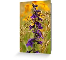 Flowers In Beauty. Greeting Card