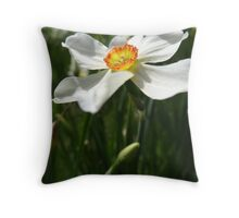 A nice Narcissis Throw Pillow